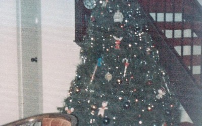 Advent Calendar of Christmas Memories: Christmas Trees