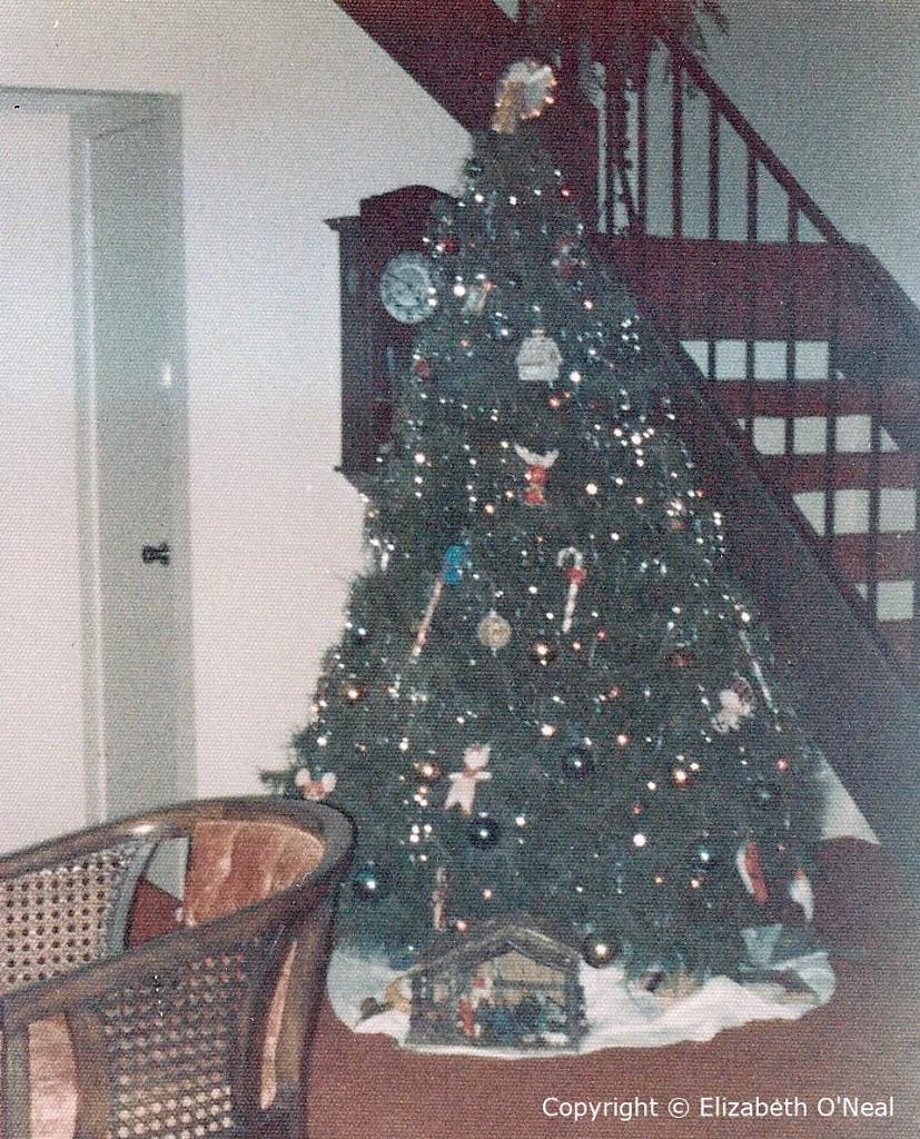 Christmas Tree c. 1976