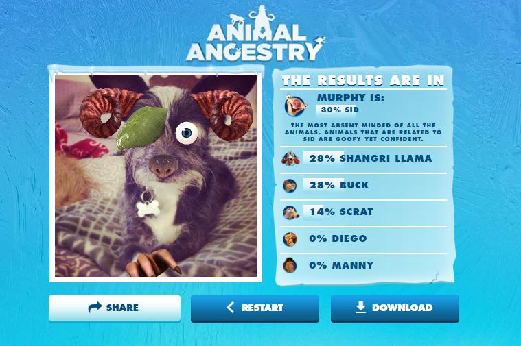 Animal Ancestry